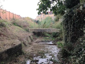 Il fosso  Ponton del Castrato.