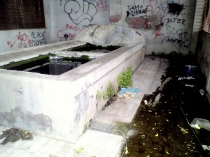 Il vecchio fontanile al ponte del cementificio