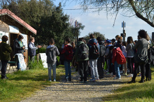 Foto della visita a Torre Flavia.