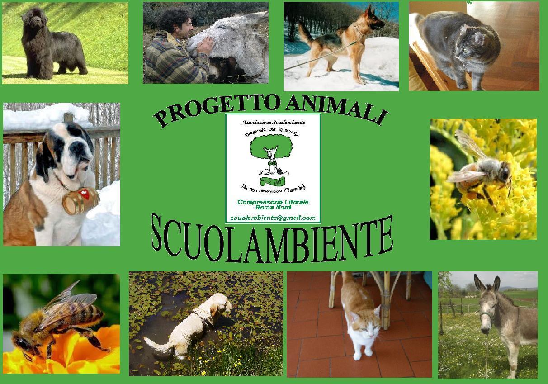 """PROGETTO SCUOLAMBIENTE """"I NOSTRI AMICI ANIMALI: IL GATTO ED IL CANE"""