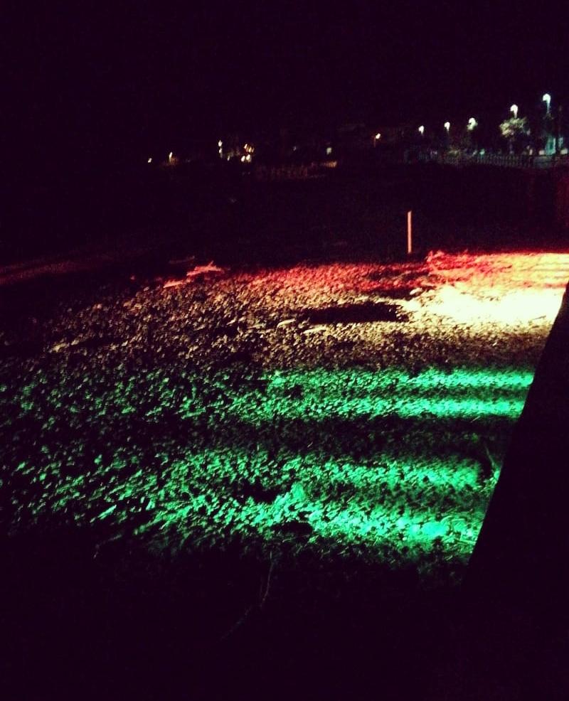 Santa Marinella: il volontariato illumina la perla con il tricolore. Panico intona l'inno d'Italia